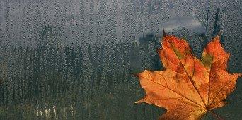 Tipps gegen den Novemberblues