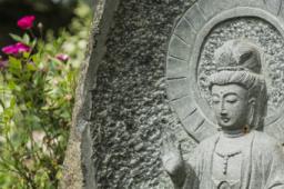 Meditation und Persönlichkeitsentwicklung - ein Update für das 21. Jahrhundert